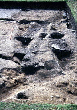Click to enlarge image of nw corner of Trench 16