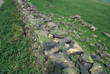Click to enlarge image of construction of drystone wall at Cobden
