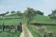 Click to enlarge image of Mellor Ridge from Hilltop Farm
